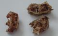 Kuřecí krky po útoku švábů